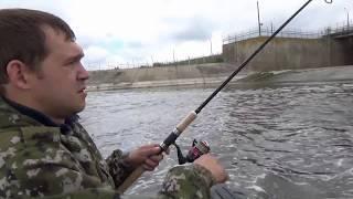 Бийск рыбалка на водосбросе