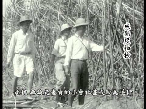 百年糖業-甜蜜台糖