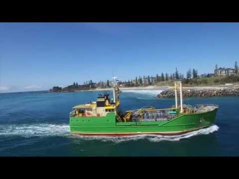 Port Macquarie surfing captured by drone