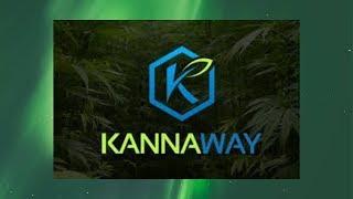 Каннабиноиды! Лечение эпилепсии и рака .Компания Kannaway!