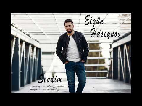 Elgün Hüseynov-Sevdim (Official Audio)