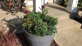 Fall Planter Update | Www.gardencrossings.com