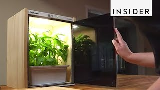 Thumbnail for Inventions to Make Your Home Greener