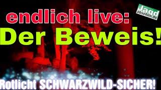 Der Beweis Live! Jagdlampe Nitecore SRT7RED von Jagdabsehen.de