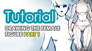 How to draw the female figure PART 1