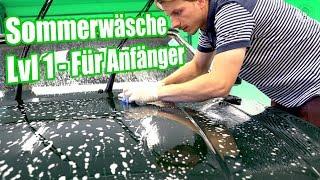Auto waschen im Sommer | Insekten, Pollen & Harz entfernen | Aston Martin Volante | Anleitung DIY