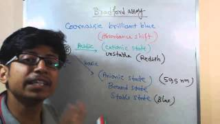 Bradford assay principle explanation