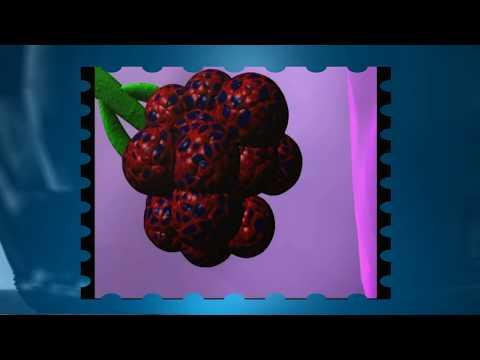 Como los parásitos caen en el organismo de la persona del vídeo