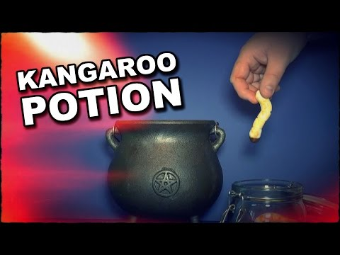 How To Make A Potion To Summon A Kangaroo For Australia Day