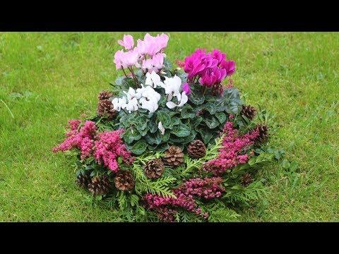 Trauerfloristik -  Pflanzschale für Allerheiligen oder Allerseelen selber machen