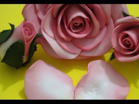 Pétala de Rosa e a flor
