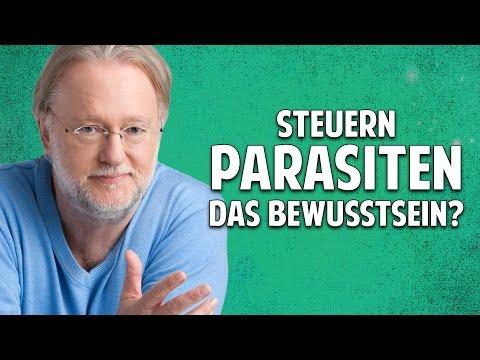 Der Hering für die Nacht von den Parasiten