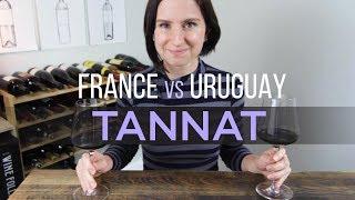 France vs Uruguay Tannat Wine
