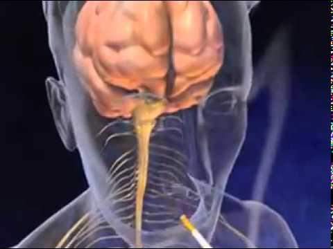 Alkalmazás leszokni fog a dohányzásról