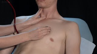 Cardiac examination ASMR Edit