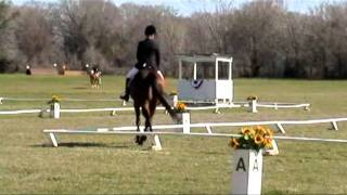 Amazing Grace 1997 Thoroughbred Mare FOR SALE