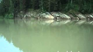 Рыбалка на реке лебедь в турочаке