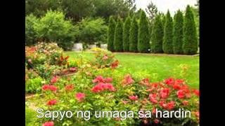 """Abot Kamay"" by Orange 'n Lemons"