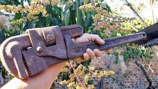 RESTORATION Rusted Giant Pipe Wrench