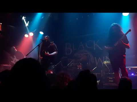 Shape The Above - New Song @ Foufs (31/07/2019)