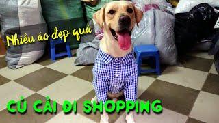 Củ Cải đi shopping mua quần áo cực đẹp | My dog goes shopping