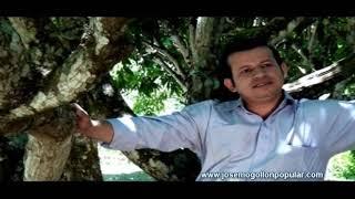 """José Mogollón - La Enredadera """"Desconectado"""""""