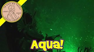 Aqua Dragons Deep Sea Habitat (Update - Day 12)......just keep swimming!