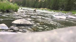 Indicator Under Films|Fly Fishing-Persistence Pays