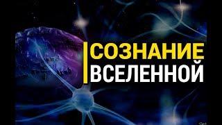 Ролик не для всех: Может ли у Вселенной быть сознание?