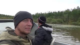 Кетовая рыбалка на амуре 2019