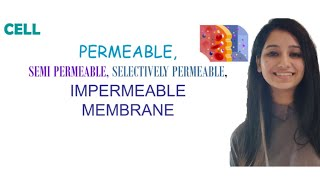 Permeable|Semi Permeable|Selectively Permeable|Impermeable Membrane|Difference|Cell|