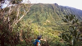 howzitboy hikes:Tripler ridge via Moanalua valley=lost