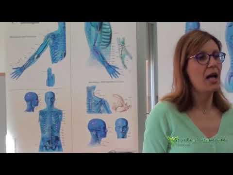 Olisticmap - Visione simbolico analogica della malattia