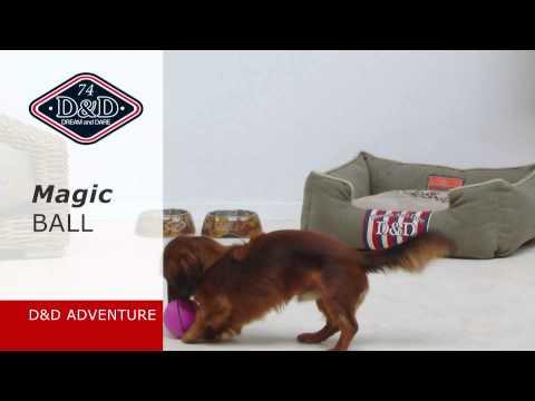 Schöne hunde und katzen Spielzeug: D&D MAGIC BALL!!