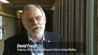 Dr. David Fraser, Animal Welfare Program | UBC Land and Food Systems