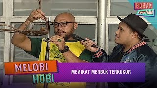 Melobi-Hobi: Memikat Merbuk Terkukur   Borak Kopitiam (12 April  2019)