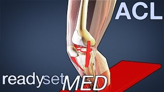 What Role Does the ACL Play in Sports? - ACL Series
