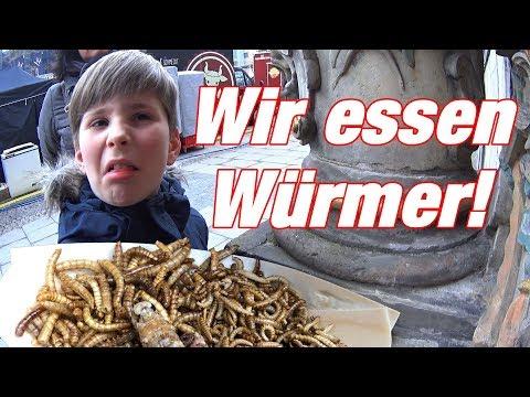 Was nach der Aufnahme der Tablette von den Würmern geschieht