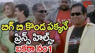 బిగ్ బి కొండ పక్కనే ప్రిన్స్ హిల్స్, బకరా నం 1 | Brahmanandam Hilarious Comedy Scenes - TeluguOne
