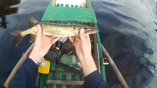 Рыбалка в конце сентября на щуку