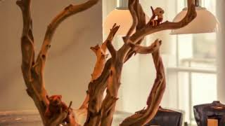 DIY Driftwood Decor: Ideas And Projects Crafts Bricolaje
