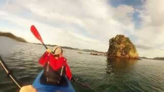 preview picture of video 'Bay of Islands Kayaking'