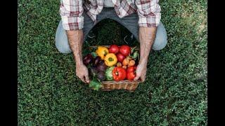 Debate sobre bioinsumos por manejo biológico on farm - 07/10/2021 13:00