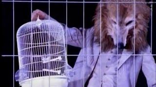 Budka Suflera - Takie tango (official video) #BudkaSuflera