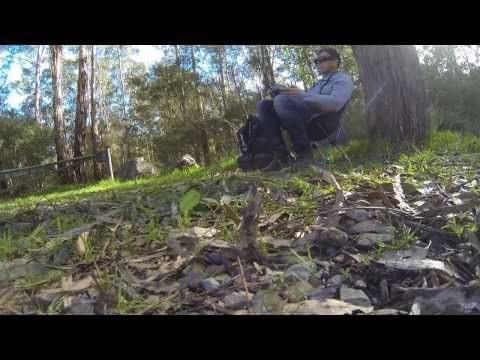 Is This The Best Quadcopter Pilot In The World?