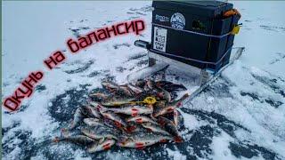 Зимняя рыбалка на угличском водохранилище