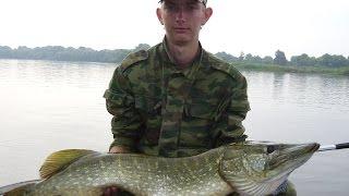 Какие рыбы ловят в томской области