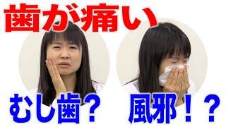 かぜで歯が痛くなることもある?