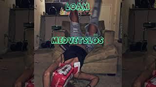 LOAM - MEDVETSLÖS (Audio)