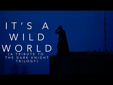 It's A Wild World - Tribute to The Dark Knight Trilogy